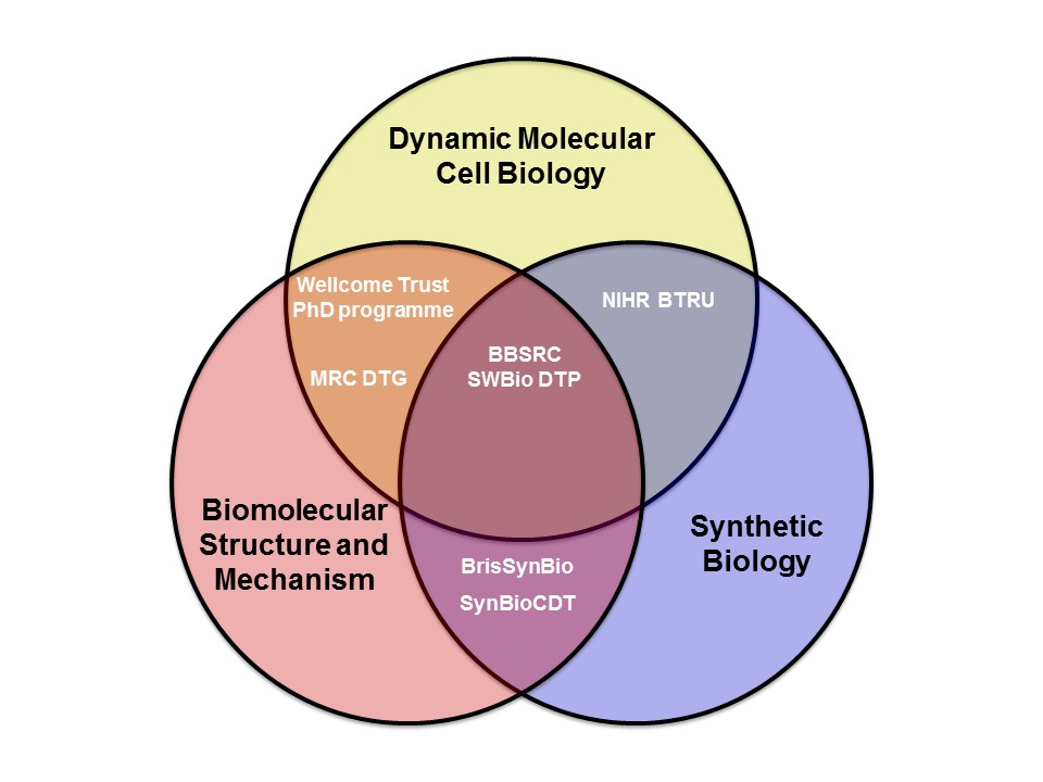 Research school of biochemistry university of bristol addressed using multiple techniques applied across multiple dimensions including both space biomolecular and cellular dimensions and time molecular ccuart Choice Image