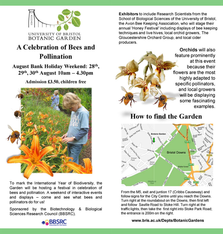 A Celebration of Bees and Pollination flier