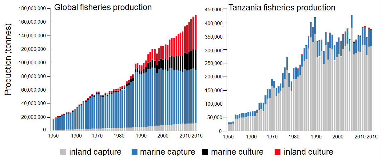 Tilapia Global fisheries production v.2