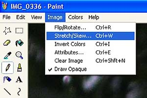 Paint re-size menu