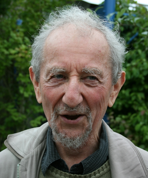 Image of Harvey Goldstein