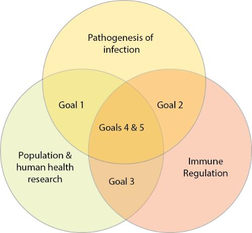 Venn diagram of the Infection & Immunity theme