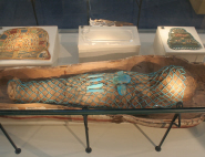 Psamtek, the only human mummy on public display in the county, in his coffin at Torquay Museum