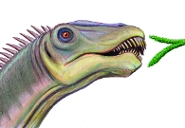 A reconstruction of Diplodocus feeding by artist Dmitry Bogdanov