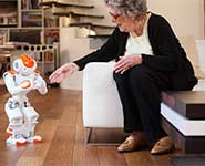 An elderly person with a robot