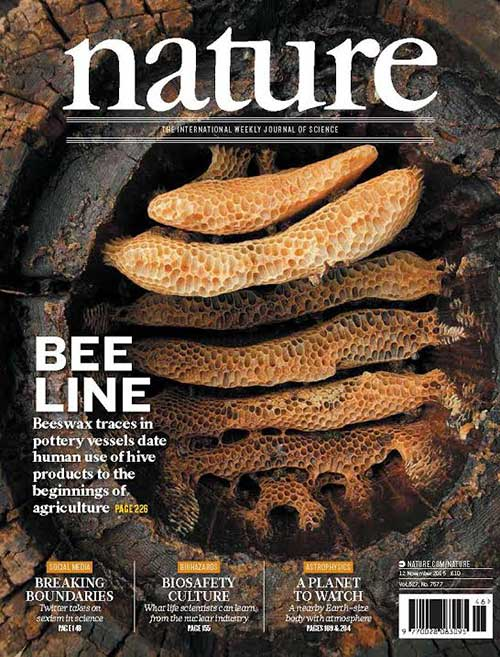Image of honeybee research on front cover of Nature
