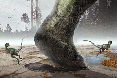 Image of a drawing of a sauropod making a footprint
