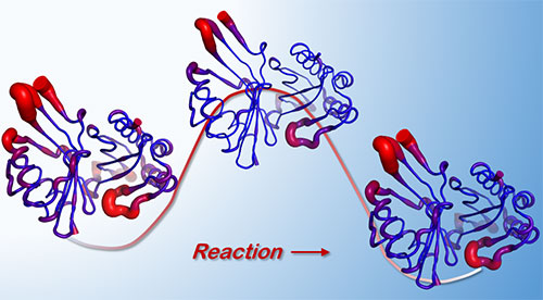 Image of enzyme reaction