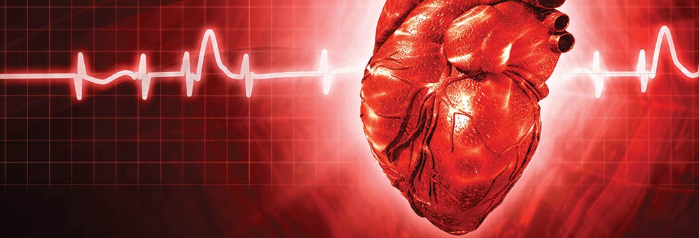 Calcium sparks hold key to heart failure | Research