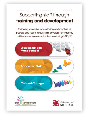 An image of the Staff Development Flyer advertising the three strategic themes