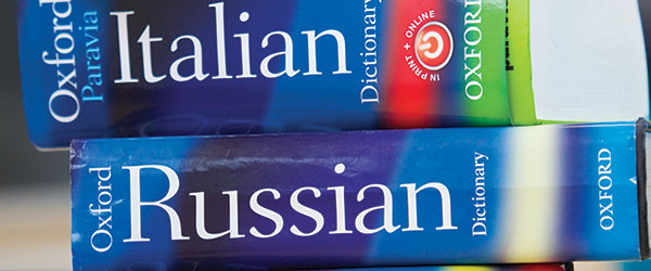 For those who have studied languages: What was/is the topic of your BA dissertation?
