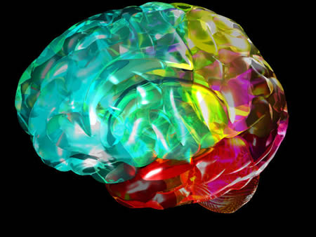 So the brain what 39 s it all about - Brain wallpaper 3d ...