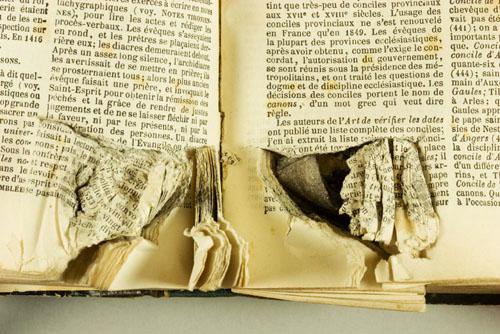 Blitzed book