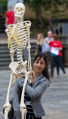 Carrying a skeleton during an open day