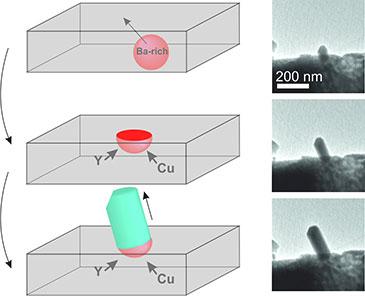 image of nanowire schematic