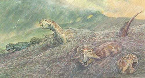 Artist's impression of Psittacosaurs