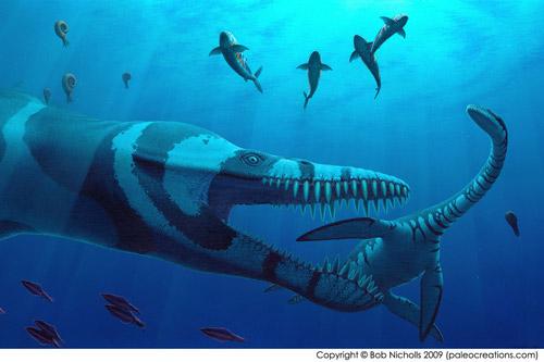august plesiosaurs swimming style news university of bristol