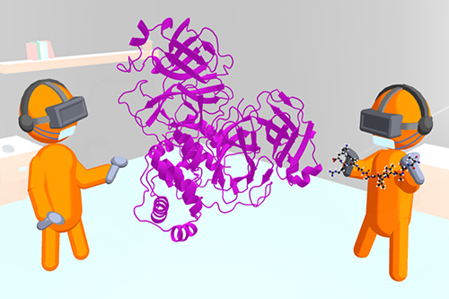 A cartoon showing iMD-VR being used to model how a viral protein binds to the SARS-CoV-2 main protease