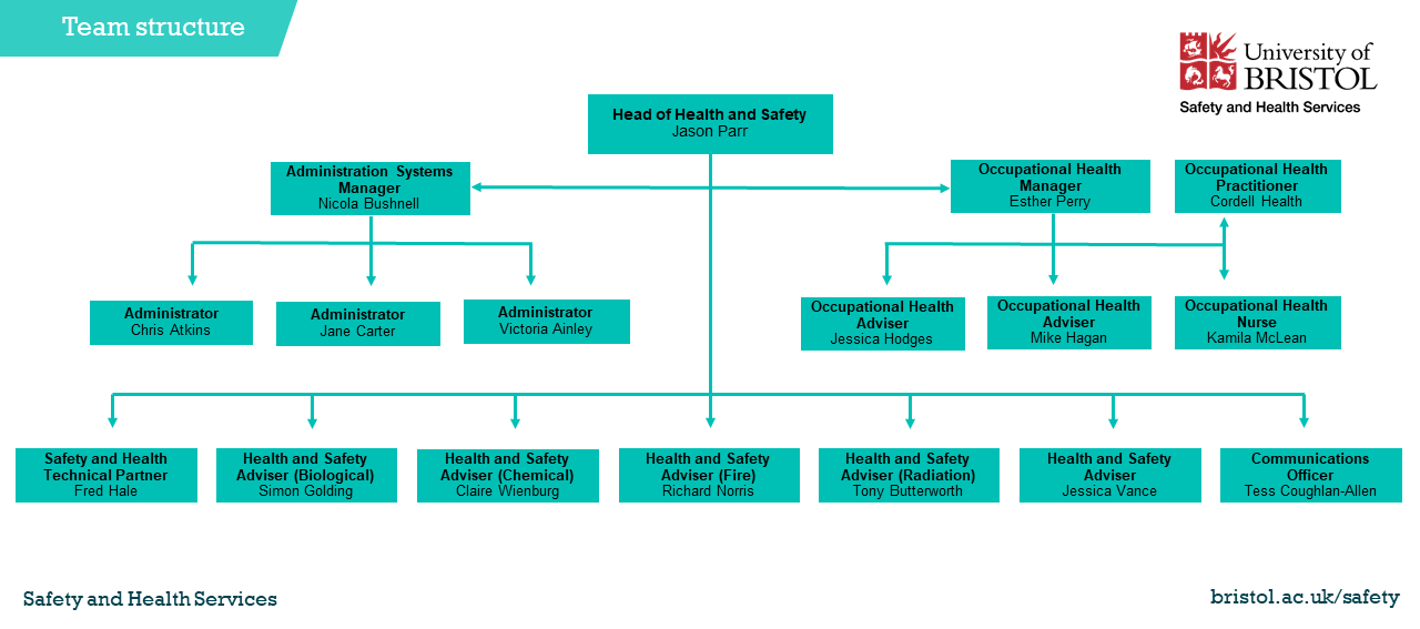 Team structure of Safety and Health Services staff